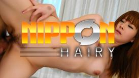Nippon Hairy
